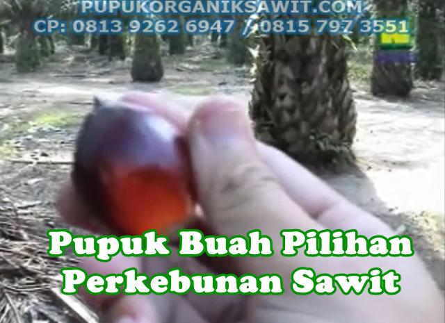 pupuk buah perkebunan kelapa sawit nasa organik