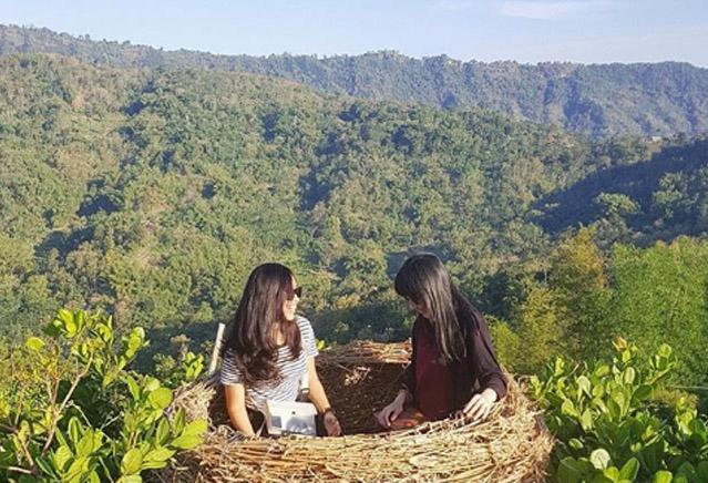 Wisata Alam di Jogya