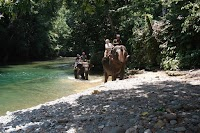 Danau Toba Travel (Bukit Lawang)