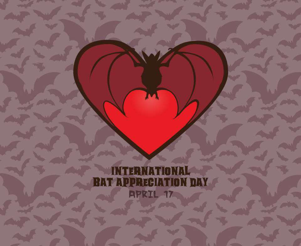 International Bat Appreciation Day Wishes Lovely Pics
