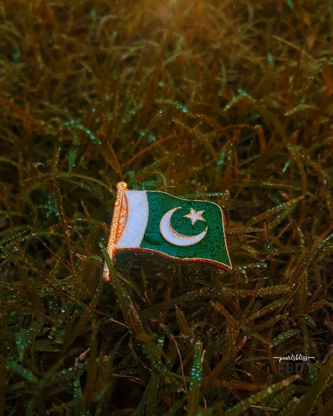 Jashan E Azadi Mubarak DP