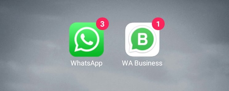 Perbedaan WhatsApp Business & WhatsApp Biasa