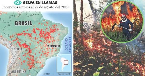 URGENTE: expertos temen que los incendios en el amazonas se pongan peor.