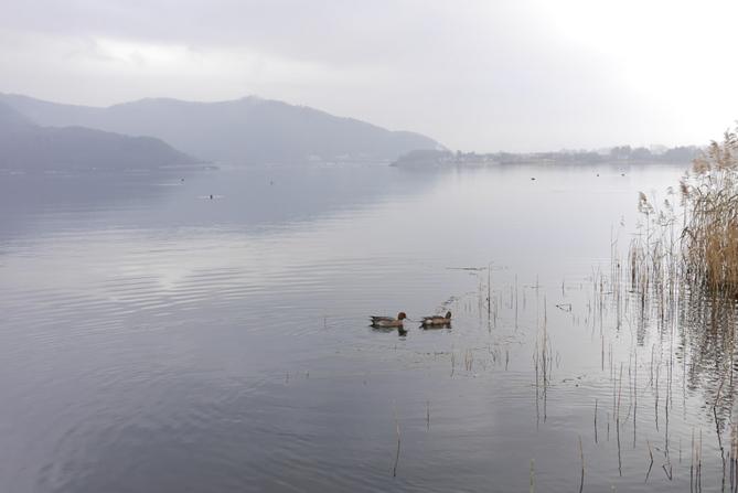 Pemandangan Danau Kawaguchiko Photo by Romi Yusardi on Unsplash