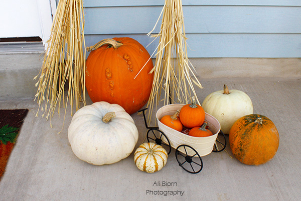 pumpkins of all colors decorate the porch
