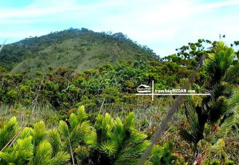 Gunung Di Sumatera Utara Untuk Para Pendaki