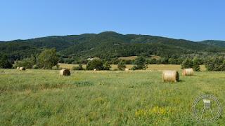 Poletni utrinek iz Podnanosa, vročinskega rekorderja letošnjega poletja (foto: Rok Nosan).
