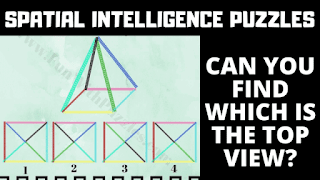 In these Spatial Reasoning Puzzles, your challenge is to find the top view of the pyramid