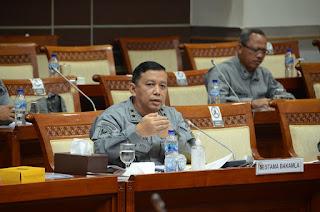 RDP dengan DPR RI, Bakamla Beberkan Roadmap Penguatan