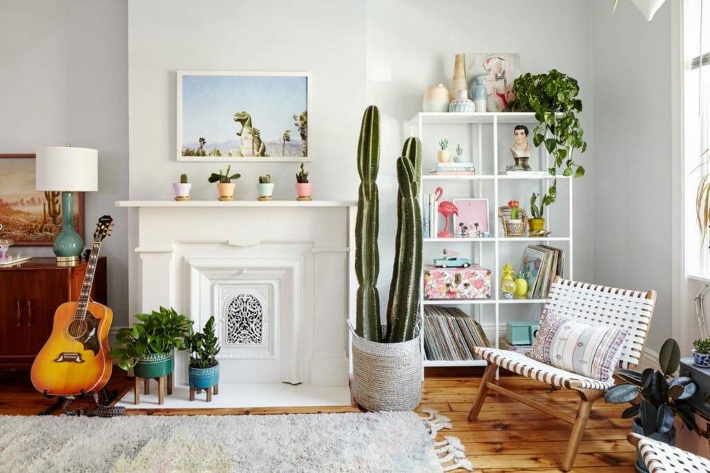 Decorar con cactus, las plantas con superpoderes_10