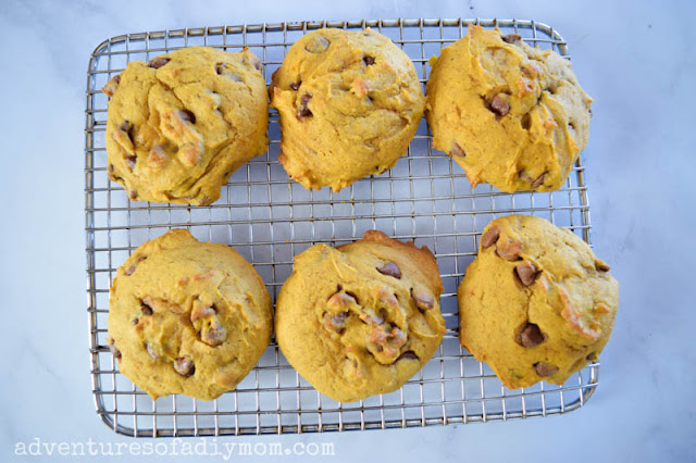 soft pumpkin cookies with chocolate chips
