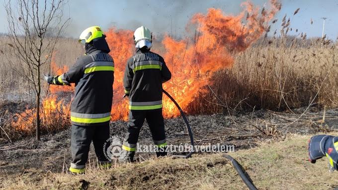 Valódi tűzzel gyakorolták a szabadtéri tüzek oltását Mórahalomnál