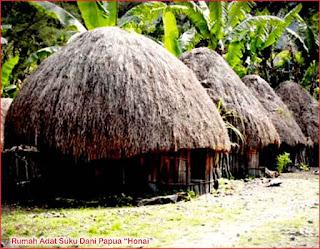 Gambar-Rumah-Adat-Suku-Dani-Papua