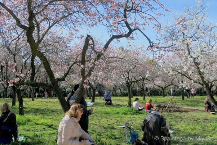 マドリードの公園でアーモンドの花咲く木の下で写生を楽しむグループ