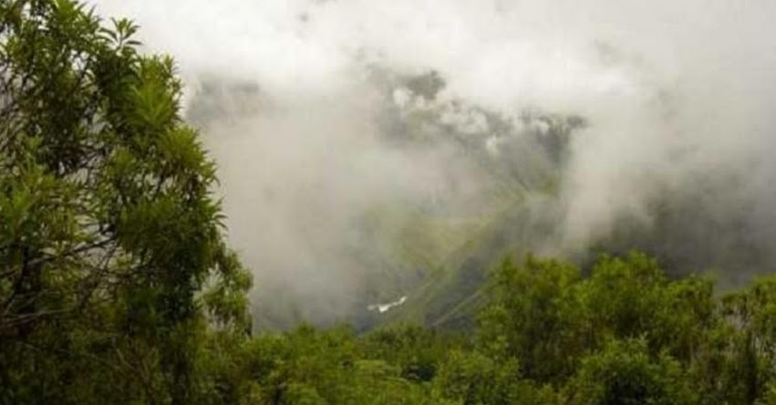 SENAMHI ALERTA: Lluvia de moderada a fuerte intensidad caerá desde mañana en la selva norte