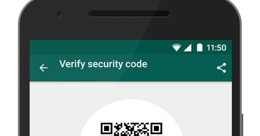 WhatsApp Security Verification -Elizabeth Boni