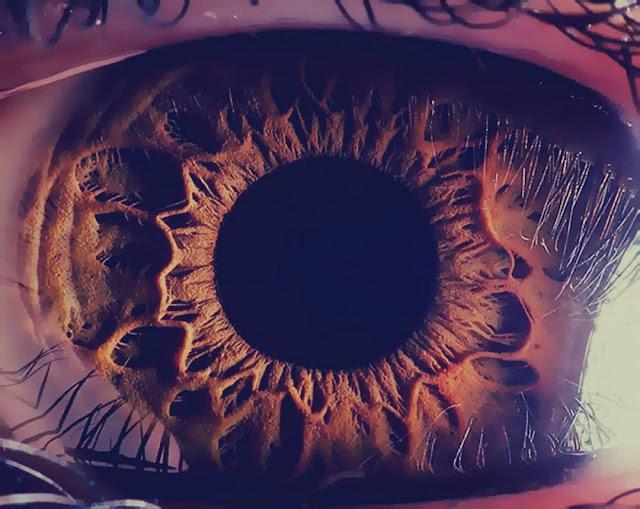حقائق عن عين الإنسان