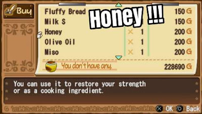 How to Get Honey Harvest Moon: Hero of Leaf Valley