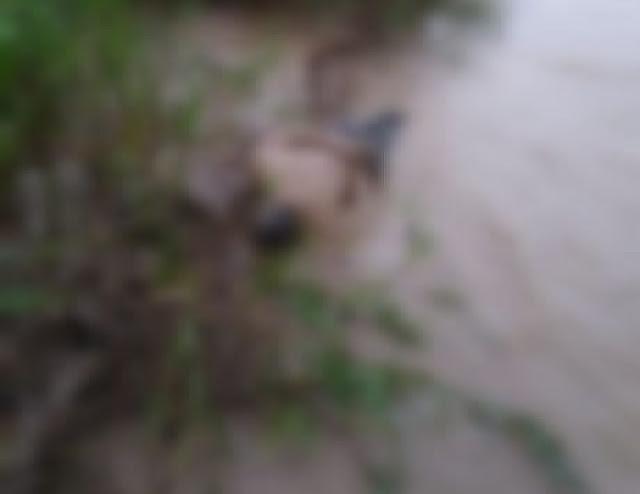 FRONTERA: Joven asesinado con arma de fuego fue hallado en el río Arauca entre Venezuela y Colombia.