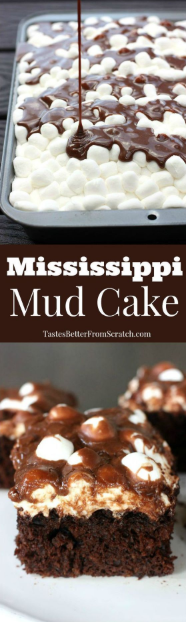 This Mississippi Mud Cake is a chocolate lovers dream! A delicious homemade chocolate cake with melted marshmallows and warm chocolate frosting poured on top. Trust me, it's as delicious as it sounds!