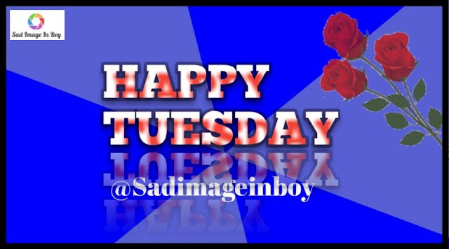 Happy Tuesday images   happy tuesday image, it's tuesday images, tuesday images funny