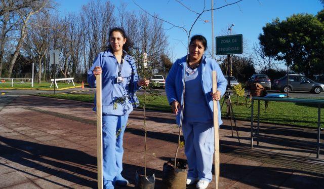 Hospital de Osorno Conmemoró Día Mundial del Árbol