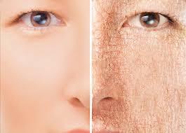 best face mask for dry skin in urdu