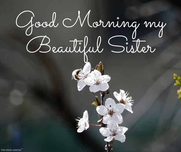 goodmorning my beautiful sister