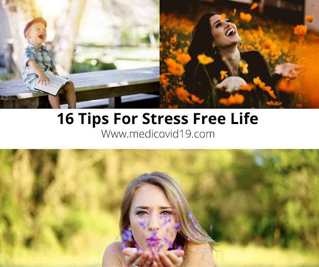 Your Ultimate Guide To Stress Free Life