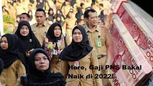 Formula Gaji Sedang Dirombak, BKN : Gaji PNS Bakal Naik di 2022!