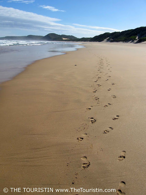 Footprints in the sand at Buffels Bay beach in Knysna in South Africa.