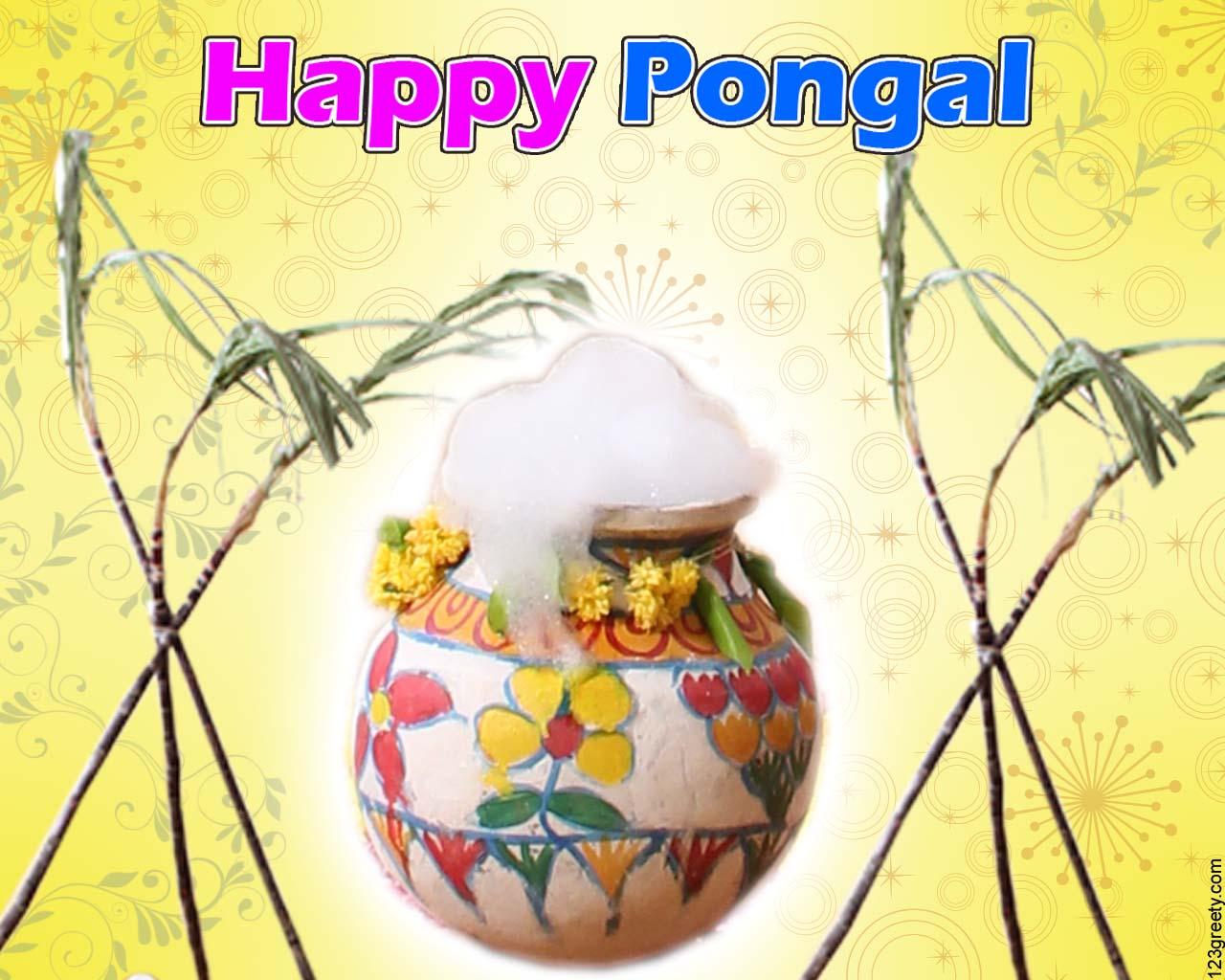 picturespool  happy pongal 2013