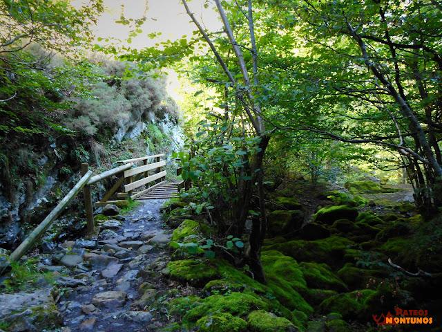 Desfiladero de Los Arrudos: Puente la Robre