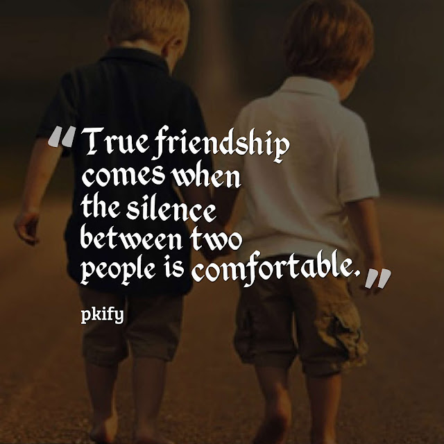 True Friendship Comes When the Silence Between Two People Is Comfortable Friendship Quotes