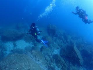 2021年9月27日の柏島ダイビング