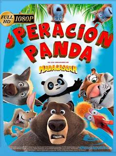 ¿Quien Perdió Un Panda? (2019) HD [1080p] Latino [GoogleDrive] SilvestreHD