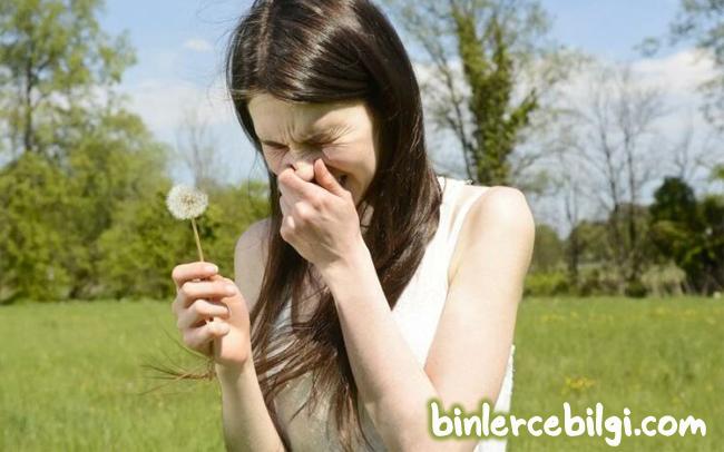 Polen alerjisi nedir? polen alerjisi yani saman nezlesi neden olur? polen alerjisinin belirtileri nelerdir? tedavisi nasıl olur? en çok hangi şehirlerde görülür?