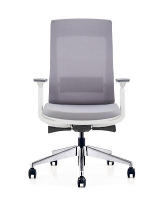 best ergonomic home office chair under 350