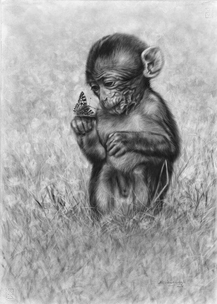 07-Monkey-with-Butterfly-Danguole-Serstinskaja-Animal-Dry-Brush-Technique-Paintings-www-designstack-co