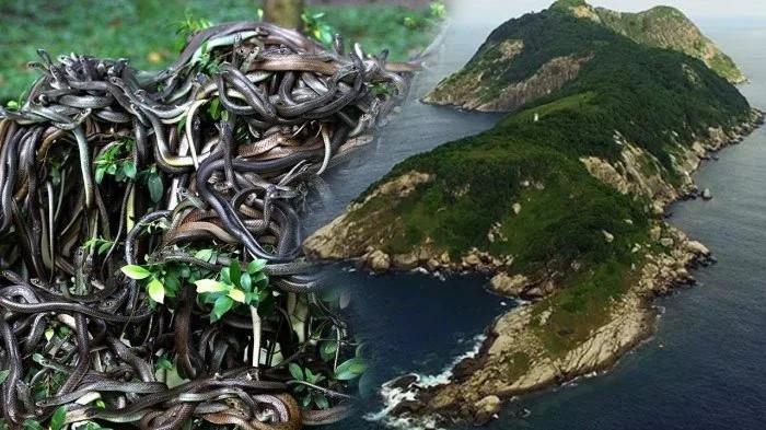 Thế giới tồn tại những hòn đảo kỳ lạ ẩn chứa bí mật đến không ngờ