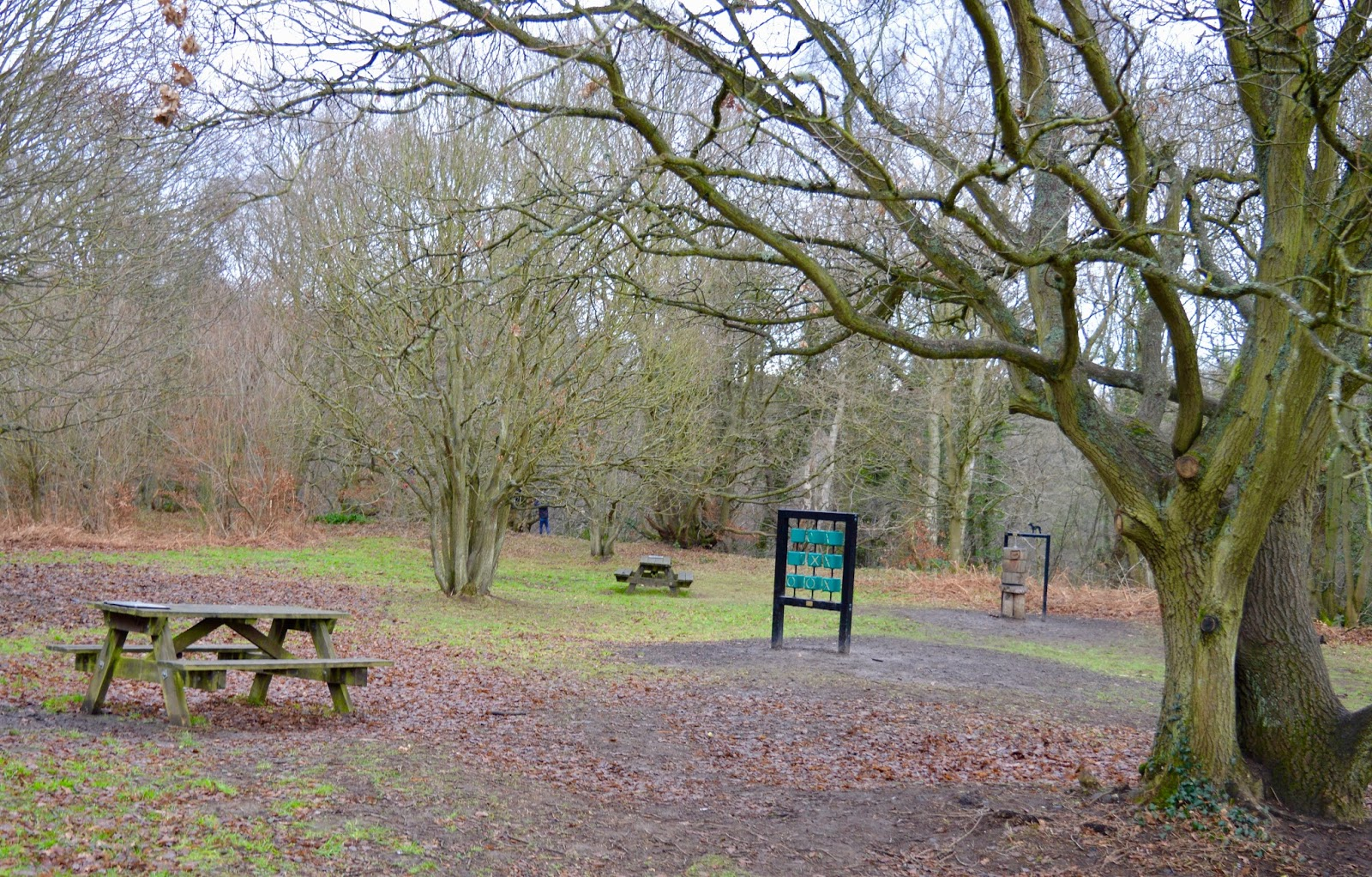 Our Visit to Plessey Woods - A FREE day out in Northumberland. It was very muddy and the perfect chance for Harry to put his GORE-TEX shoes through their paces - picnic tables and noughts and crosses