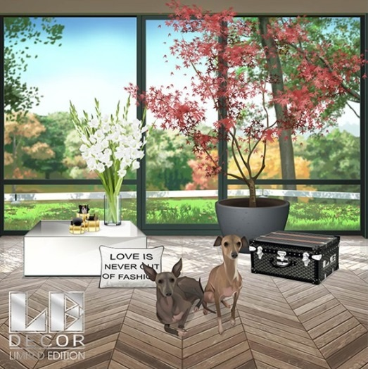 There Is A New Release Of Le Decor Out In Plaza Aand The Theme Fall Go And Grab What You Like Before It S Gone