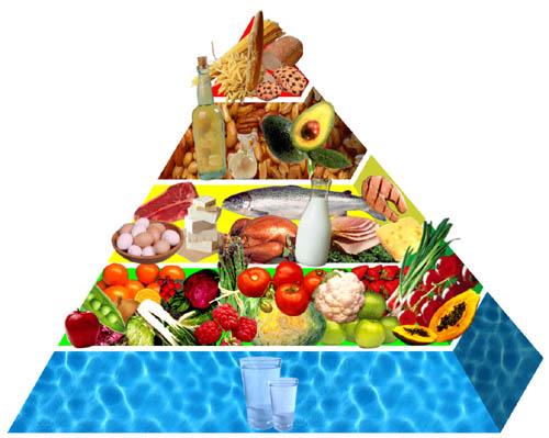 contagem dos alimentos dieta zona