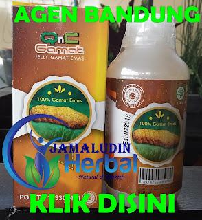 http://pengobatanmultikhasiat30.blogspot.co.id/p/qnc-jelly-gamat-agen-bandung-selamat.html
