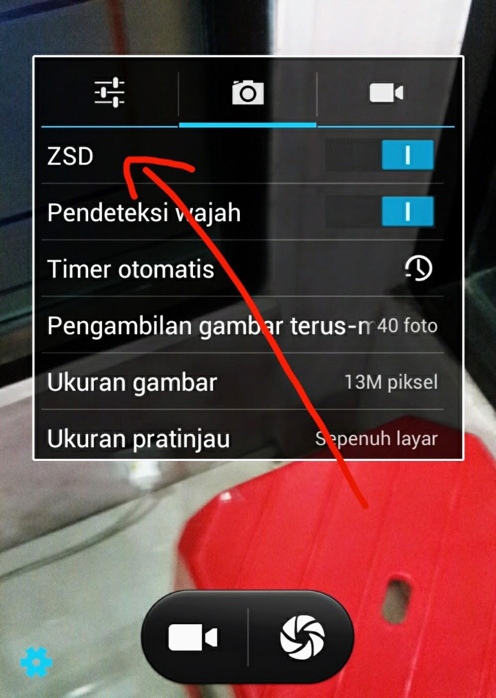 fungsi ZSD