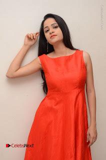 Telugu Actress Divya Nandini Stills in Orange Sleeveless Gown at Chennai Chaitrama Movie le Launch Event  0077.JPG