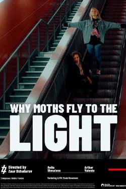 Why Moths Fly to the Light (2020)
