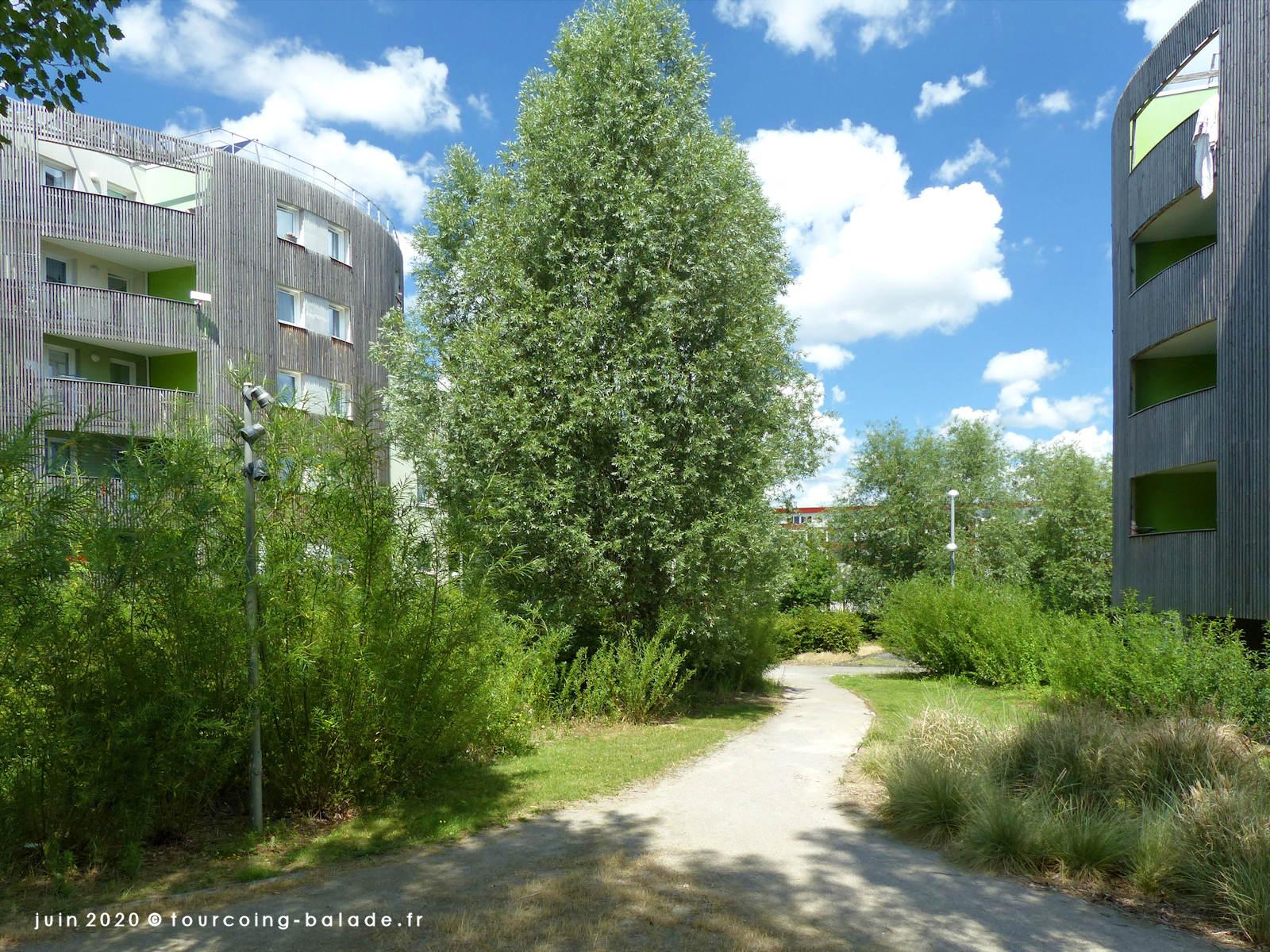 Résidences Les Jardins de Belenconjtre, Tourcoing 2020