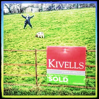 Happy figure stands arms and legs akimbo in a grassy field, a spaniel noses the earth nearby. Background is a hedge and stables, foreground is an iron fence with a SOLD sign on it.