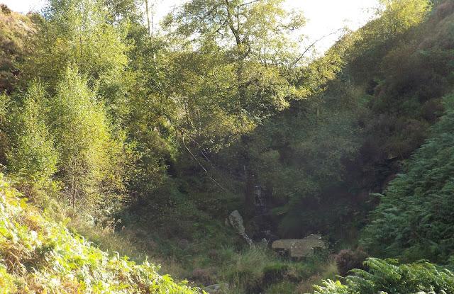 The-Bronte-Falls